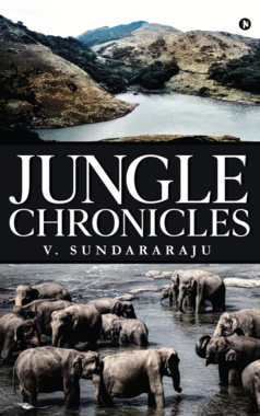 Jungle Chronicles