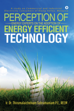 Perception of Energy Experts on the Adoption of Energy Efficient Technology